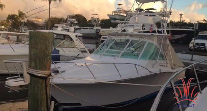 Cabo 32 FT - Fishing Boat Rental